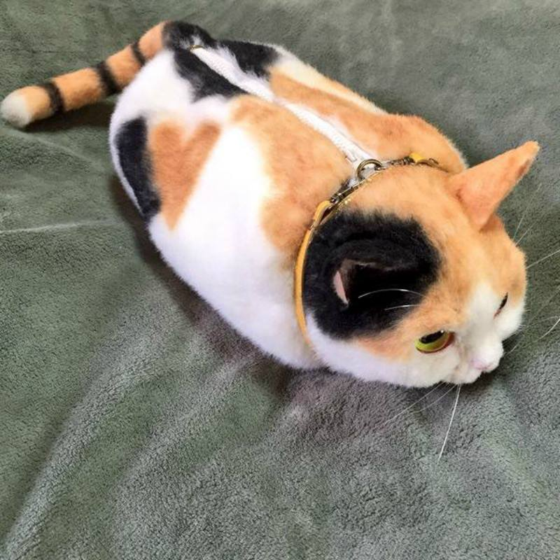 Bolsos de gato foto 2