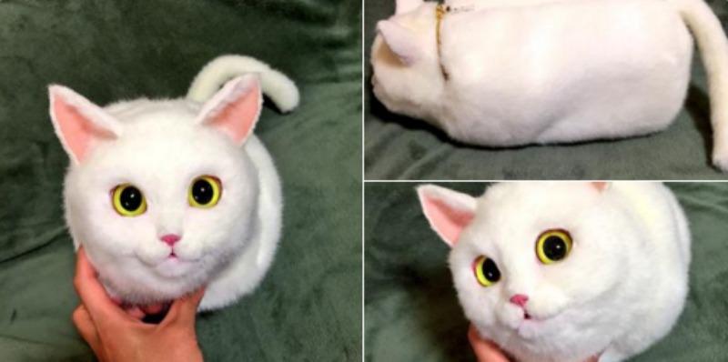 Bolsos de gato foto 6
