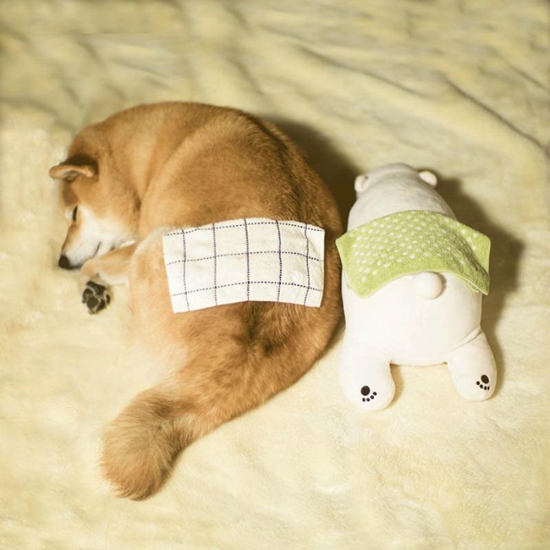 Perro y oso de peluche foto 7