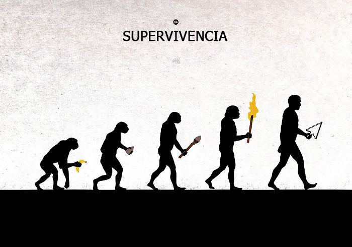 evolucion humanidad 15
