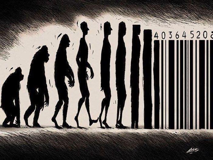 evolucion humanidad 4