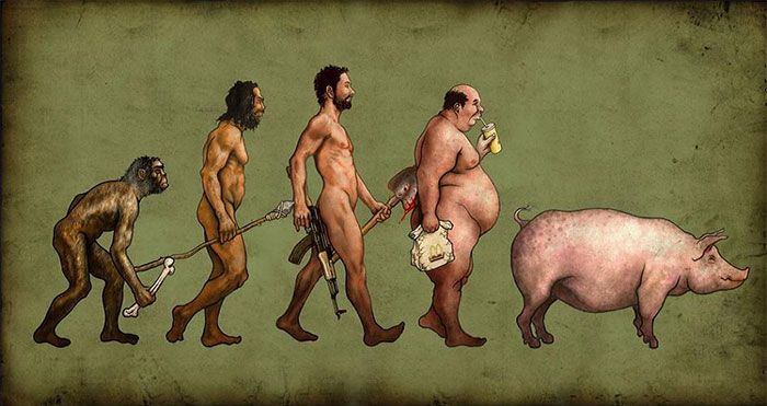 evolucion humanidad 5