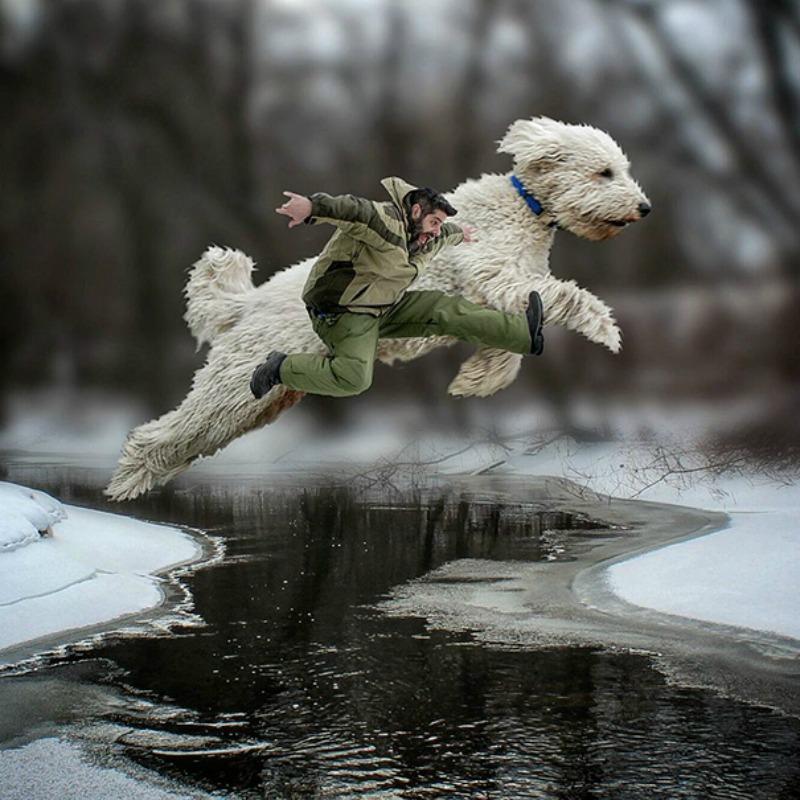 Perro gigante foto 3