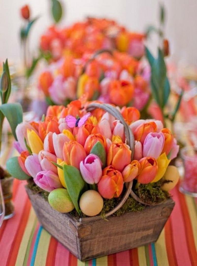 Los Tulipanes Son Las Flores Más Hermosas Del Mundo Y Estos