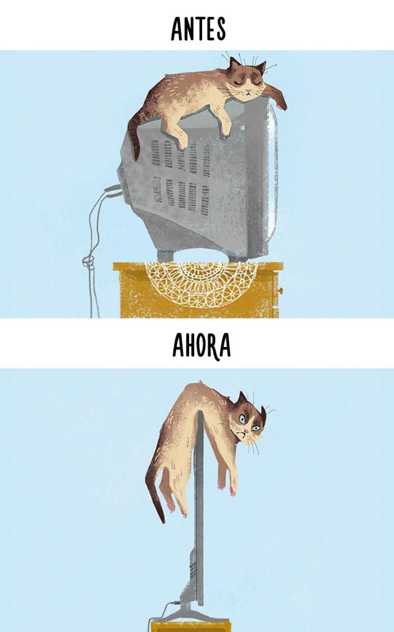 La tecnologia y los gatos 1