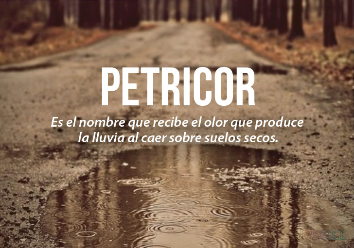 palabras lindas español 2