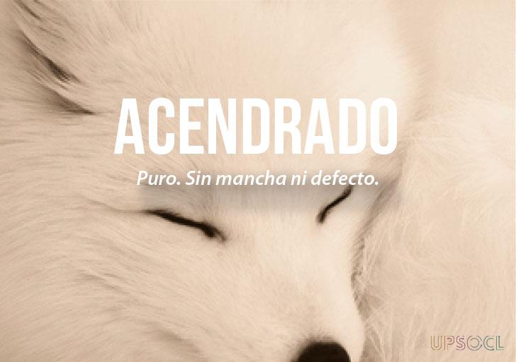 palabras lindas español 7