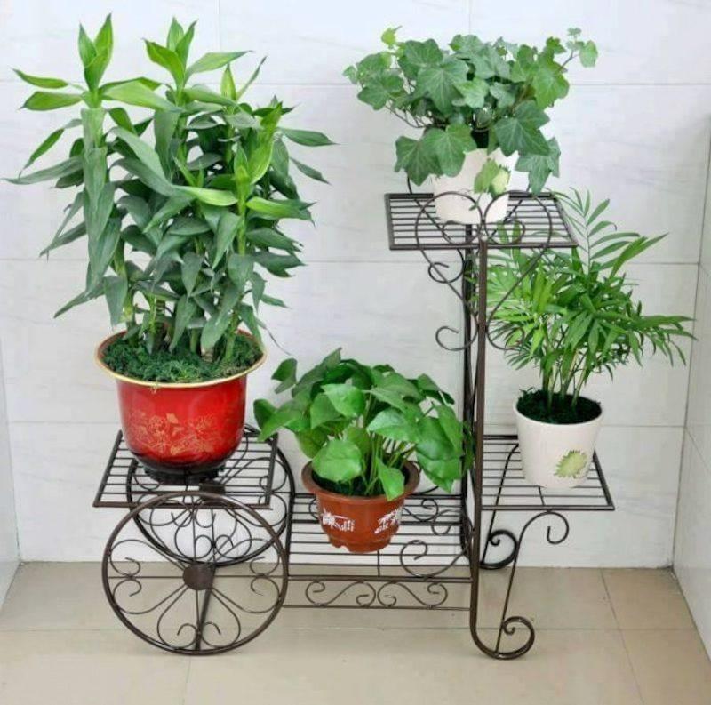 10 geniales ideas para decorar tu hogar con las plantas for Ideas para decorar tu hogar