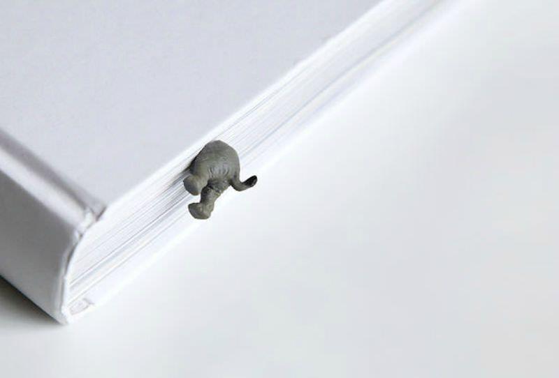 Elefantes foto 1