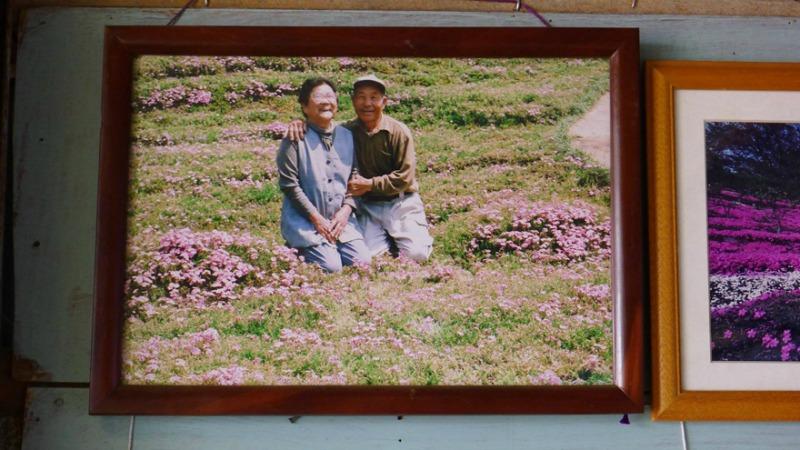 Marido y campo de flores foto 9