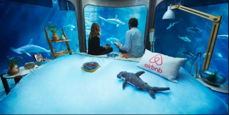 Cama en tanque de tiburones foto 3