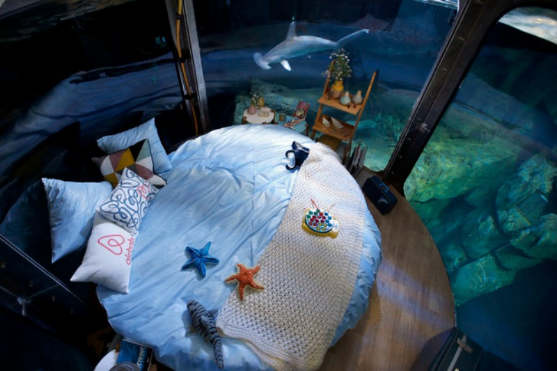 Cama en tanque de tiburones foto 5