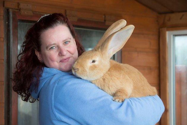 Conejo gigante encuentra hogar foto 2
