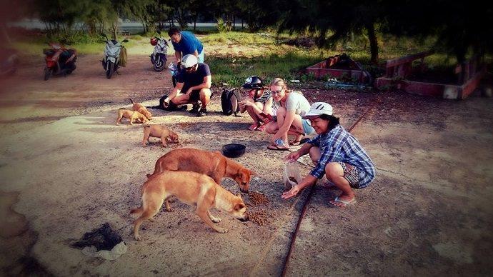 Perro rescatado en Tailandia foto 2
