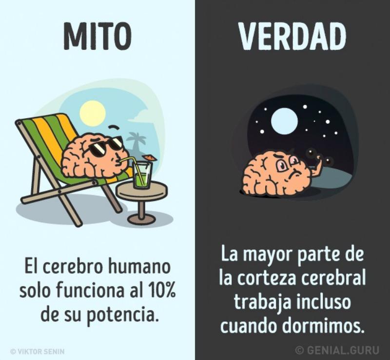 Mitos del cuerpo humano 1