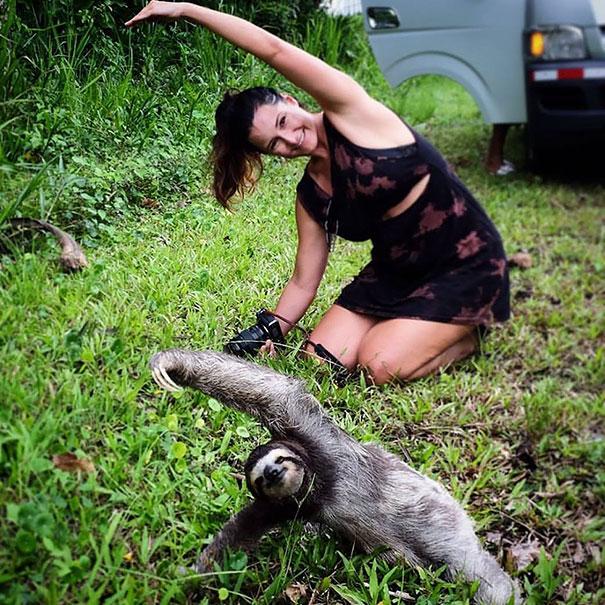 Animales yoga 16
